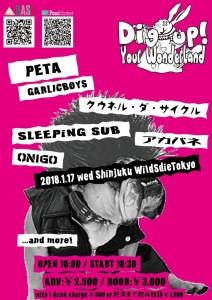 2018-01-17_Shinjuku-WildSideTokyo